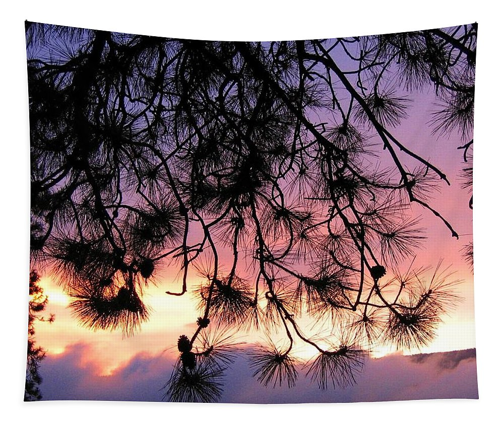 Sunset Tapestry featuring the photograph Lavender Sunset by Will Borden