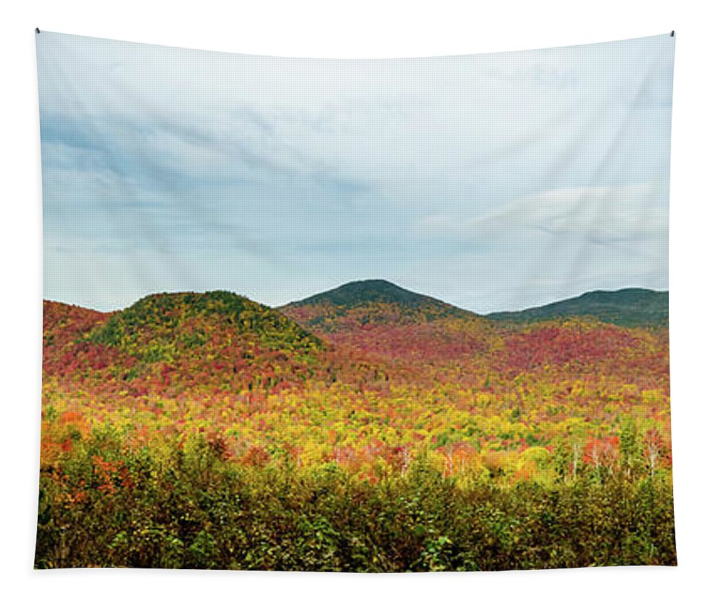 Adirondack Photo Tapestry featuring the photograph Layered Adirondack Colors by Tony Beaver