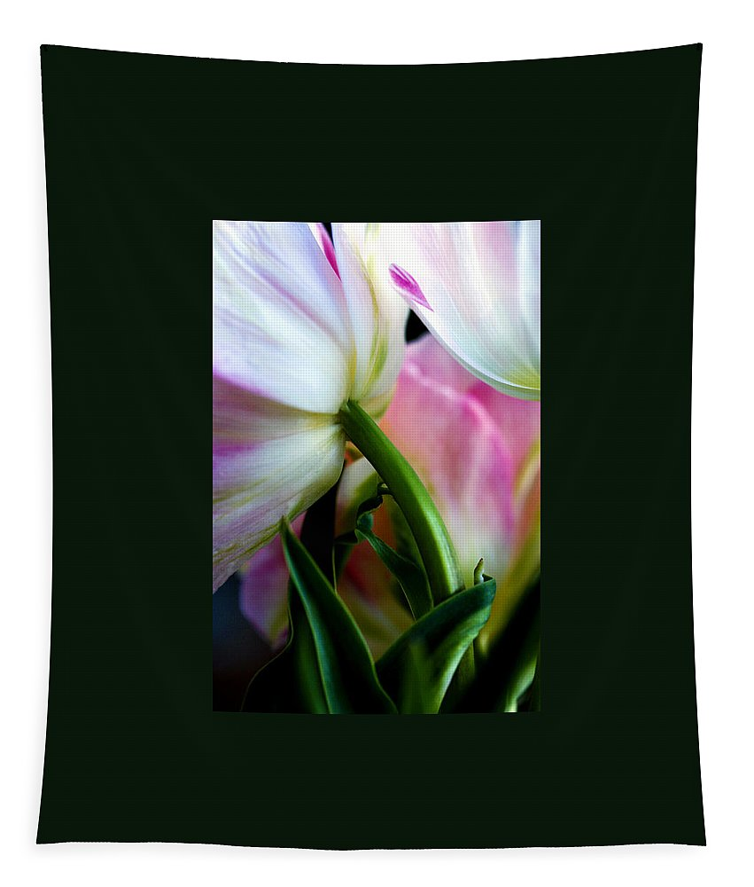 Flower Tapestry featuring the photograph Layers of Tulips by Marilyn Hunt