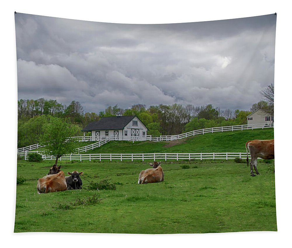 Farm Tapestry featuring the photograph Lazy Afternoon In The Country by Eleanor Bortnick