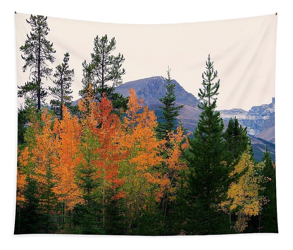 Landscapes Tapestry featuring the photograph Leaf Embrace by Karen Wiles