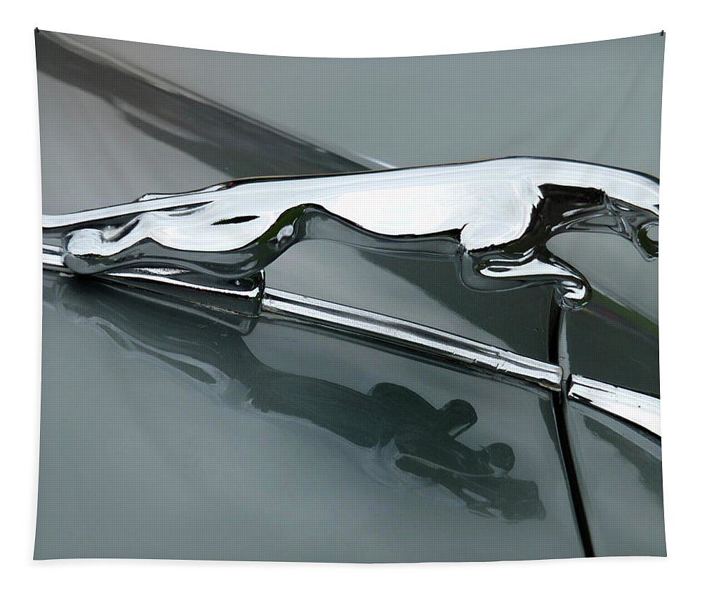 Jaguar Tapestry featuring the photograph Leaping Jaguar by Philip Openshaw