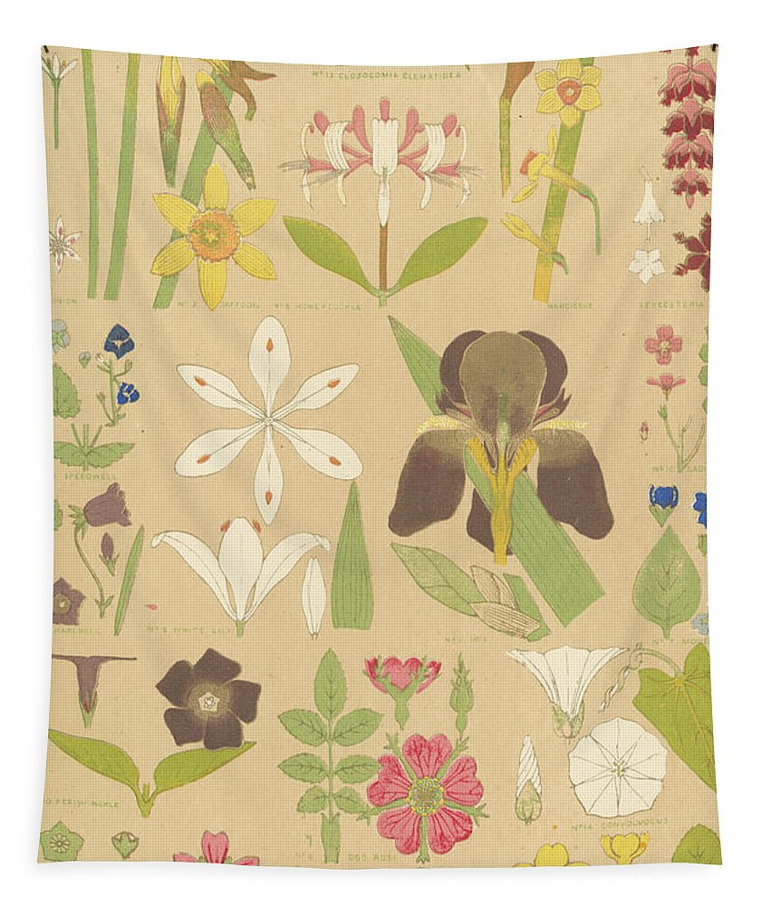 Leaves And Flowers From Nature Tapestry featuring the painting Leaves And Flowers From Nature by English School