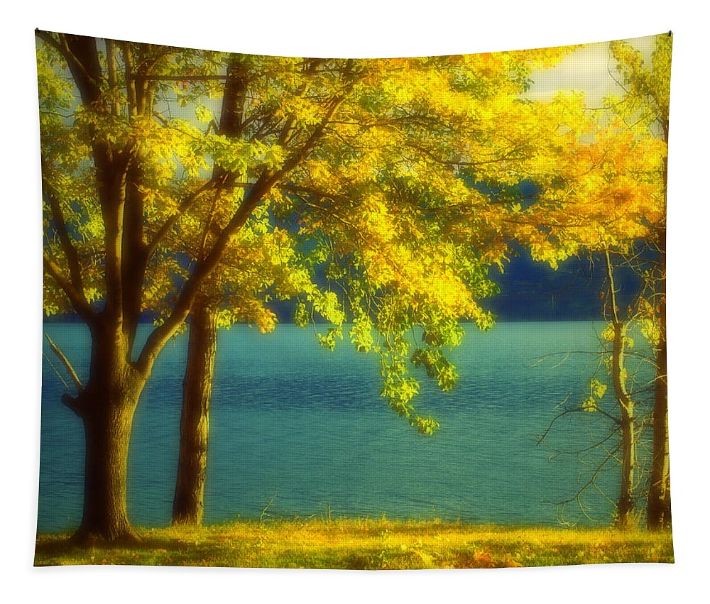 Autumn Tapestry featuring the photograph Leaves And Light by Tara Turner