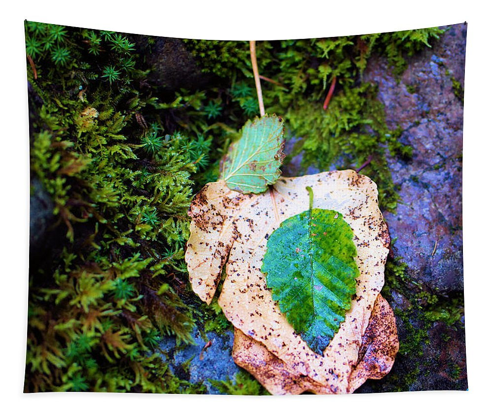 Autumn Tapestry featuring the photograph Leaves In A Pile by Jeff Swan