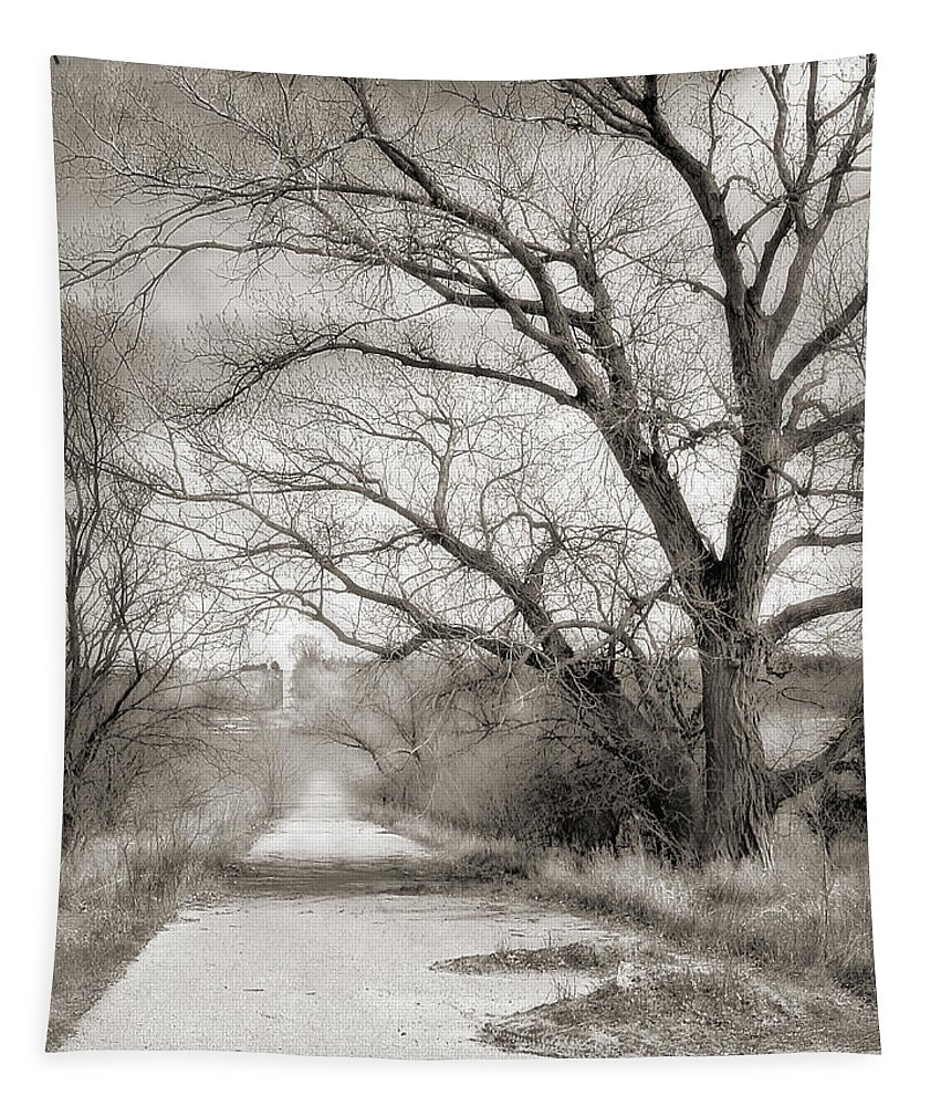 Landscape Tapestry featuring the photograph Less Traveled by John Anderson