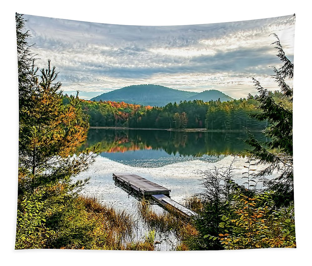 Adirondacks Tapestry featuring the photograph Let's Go Swimming by Tony Beaver