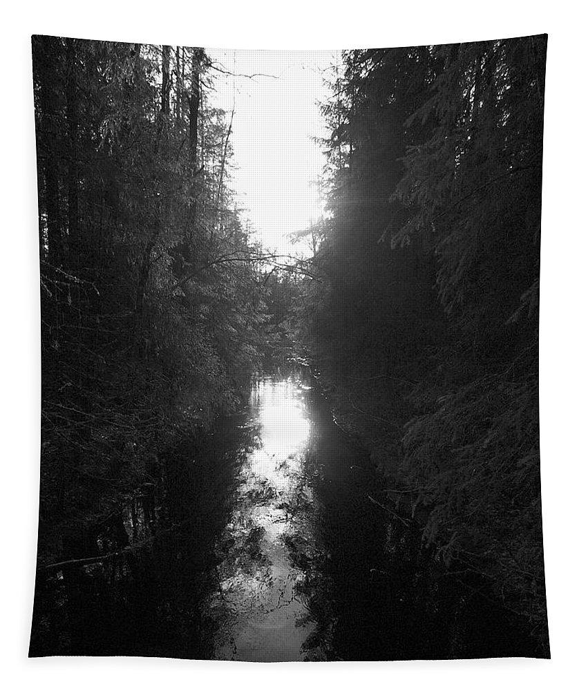 Lehtokukka Tapestry featuring the photograph Liesijoki 2 by Jouko Lehto