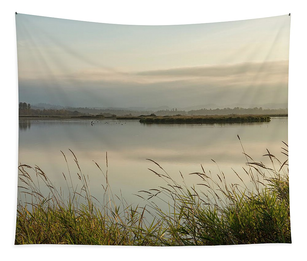 Marsh Tapestry featuring the photograph Light Falling Softly On The Marsh by Belinda Greb