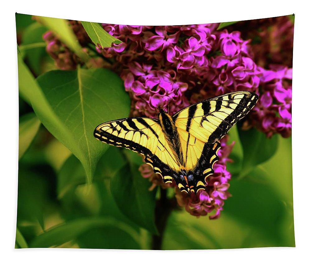 Lilac Tapestry featuring the photograph Lilac Landing Wall Art by Sherman Perry