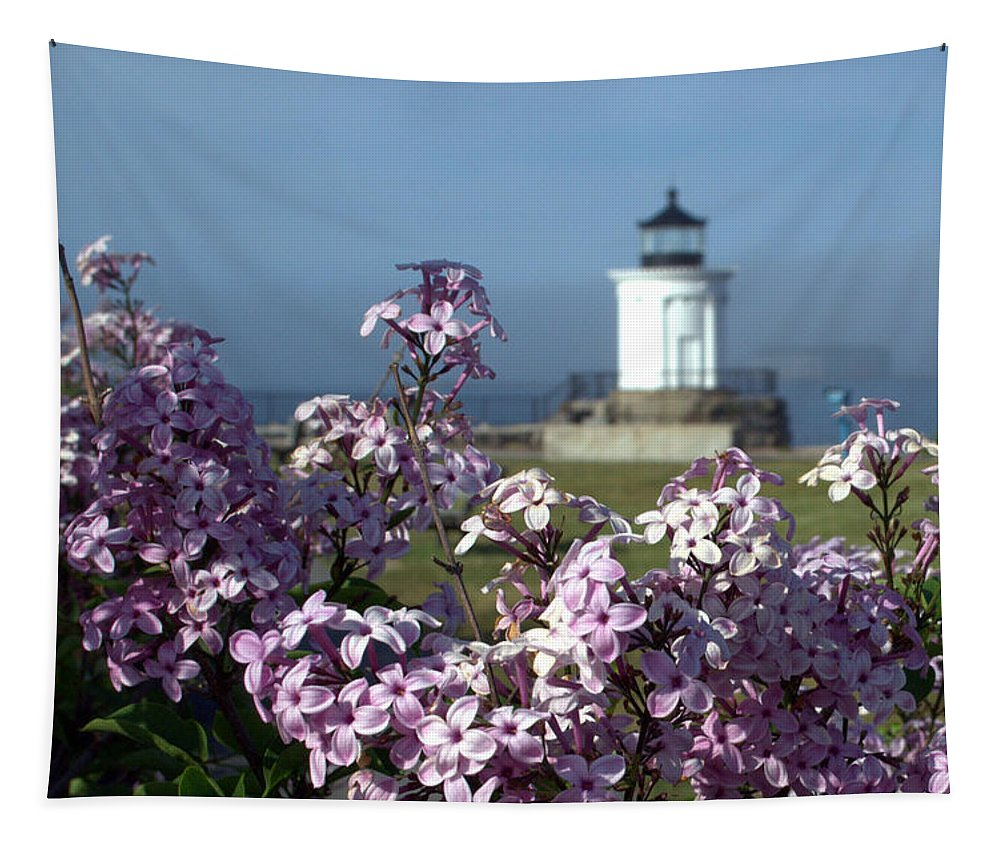 Lilacs Tapestry featuring the photograph Lilacs by Colleen Phaedra