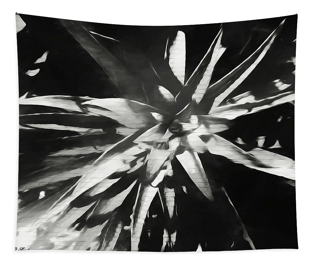 Black Tapestry featuring the photograph Lily Before The Bloom by Debra Lynch
