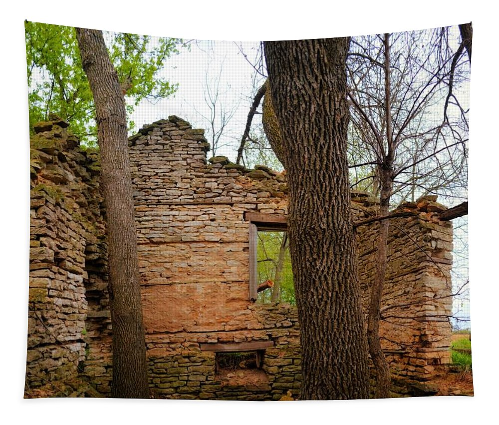 Limestone Tapestry featuring the photograph Limestone Relic 2 by Bonfire Photography