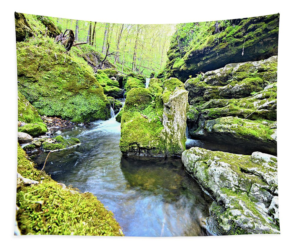 Mossy Tapestry featuring the photograph Limestone Waters by Bonfire Photography