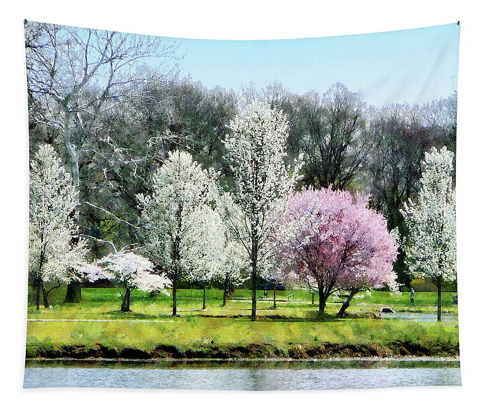 Spring Tapestry featuring the photograph Line Of Flowering Trees by Susan Savad