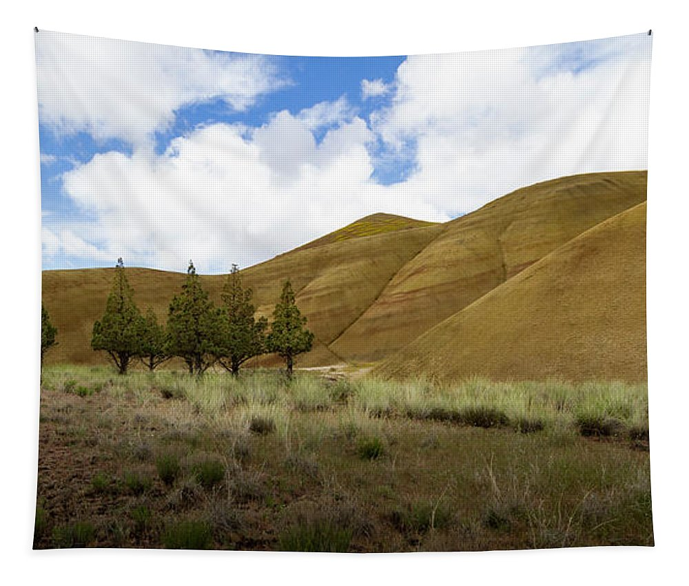 Jean Noren Tapestry featuring the photograph Line Of Trees At Painted Hills by Jean Noren