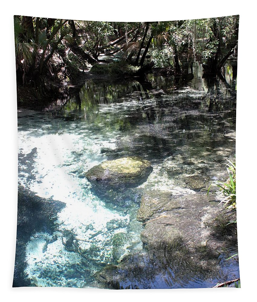 Lithia Springs Tapestry featuring the photograph Lithia Springs by Carol Groenen
