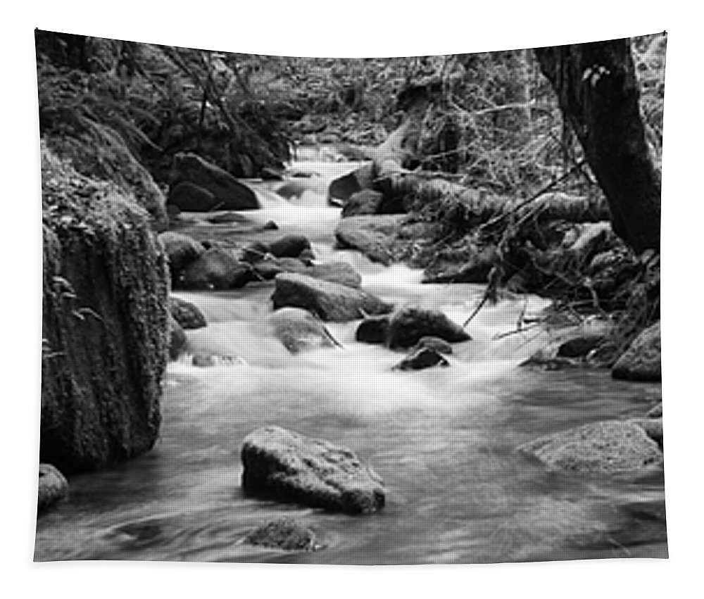 Oregon Tapestry featuring the photograph Little Creek 3 Bw by Bob Christopher