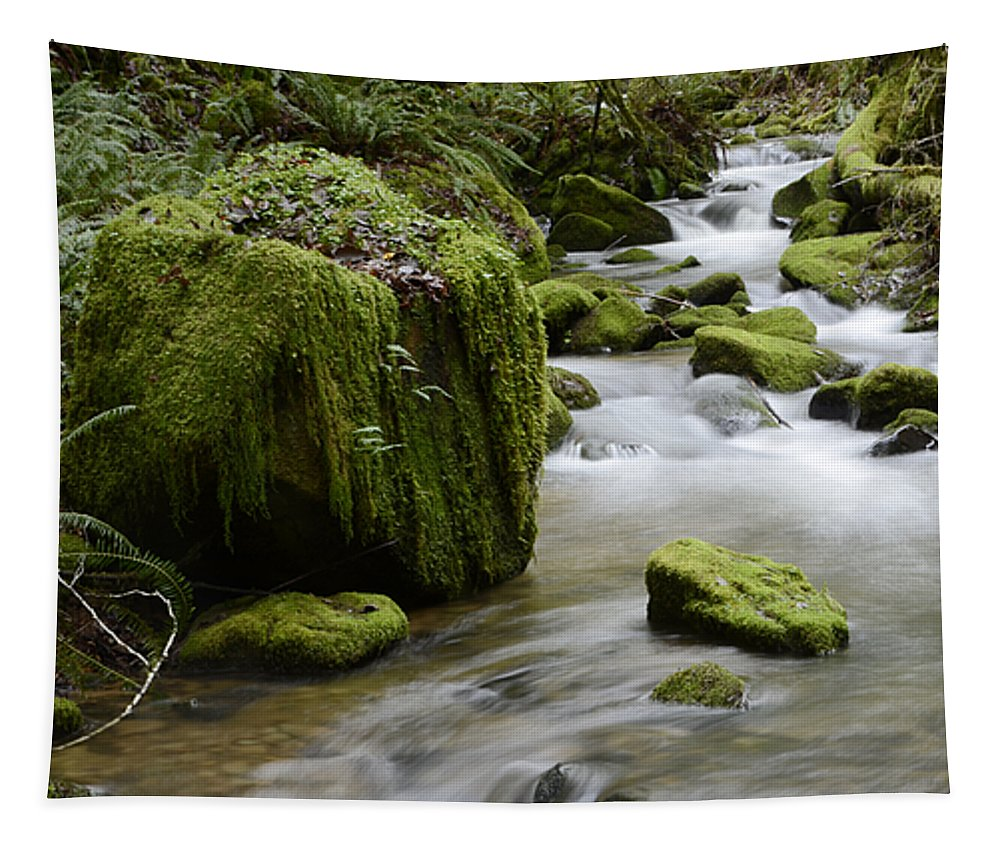 Oregon Tapestry featuring the photograph Little Creek 5 by Bob Christopher