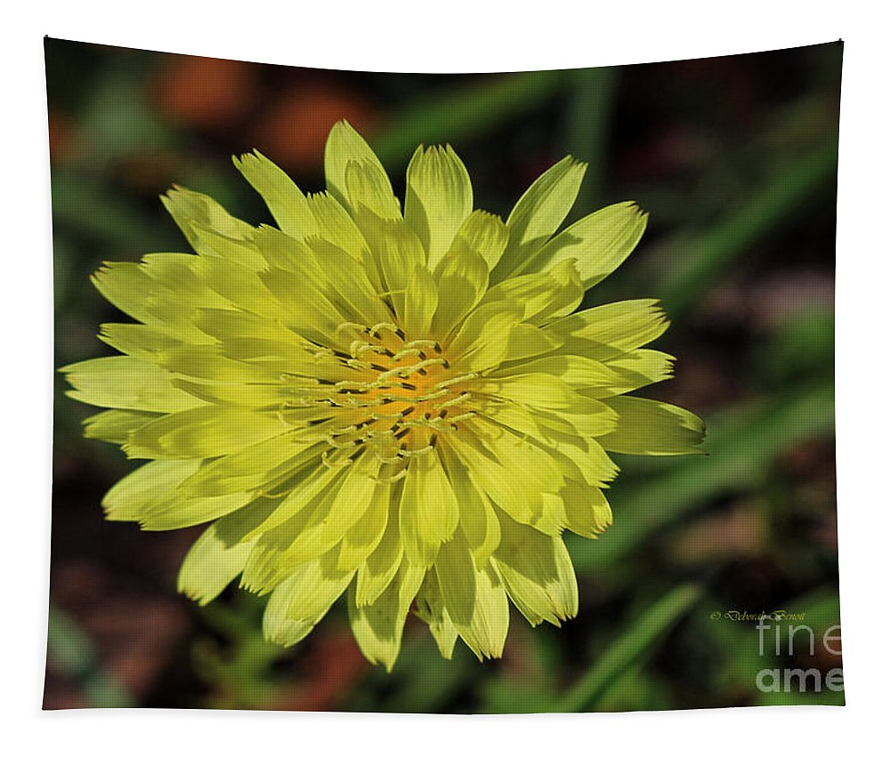 Flower Tapestry featuring the photograph Little Wild Yellow by Deborah Benoit