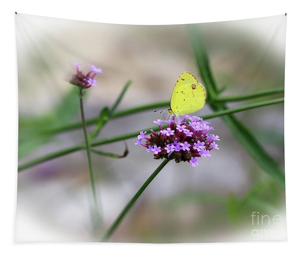 Little Yellow Tapestry featuring the photograph Little Yellow Butterfly On Verbena by Karen Adams