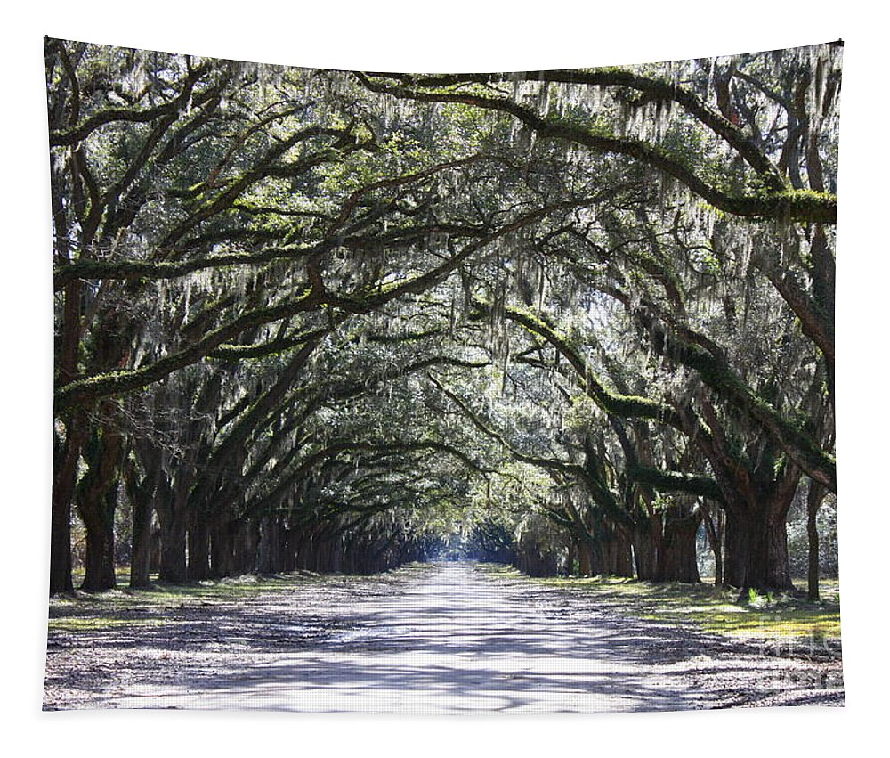 Landscape Tapestry featuring the photograph Live Oak Lane In Savannah by Carol Groenen