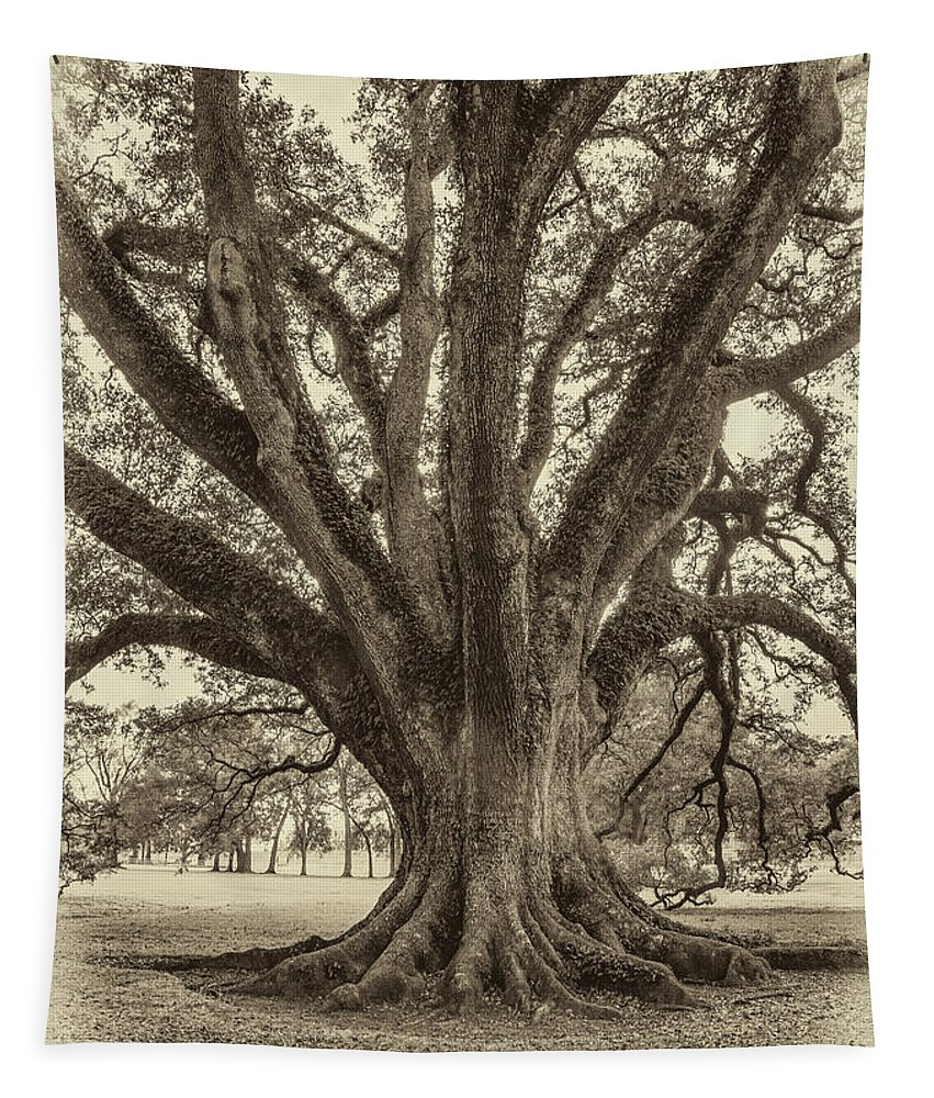 Oak Alley Plantation Tapestry featuring the photograph Living History Sepia by Steve Harrington