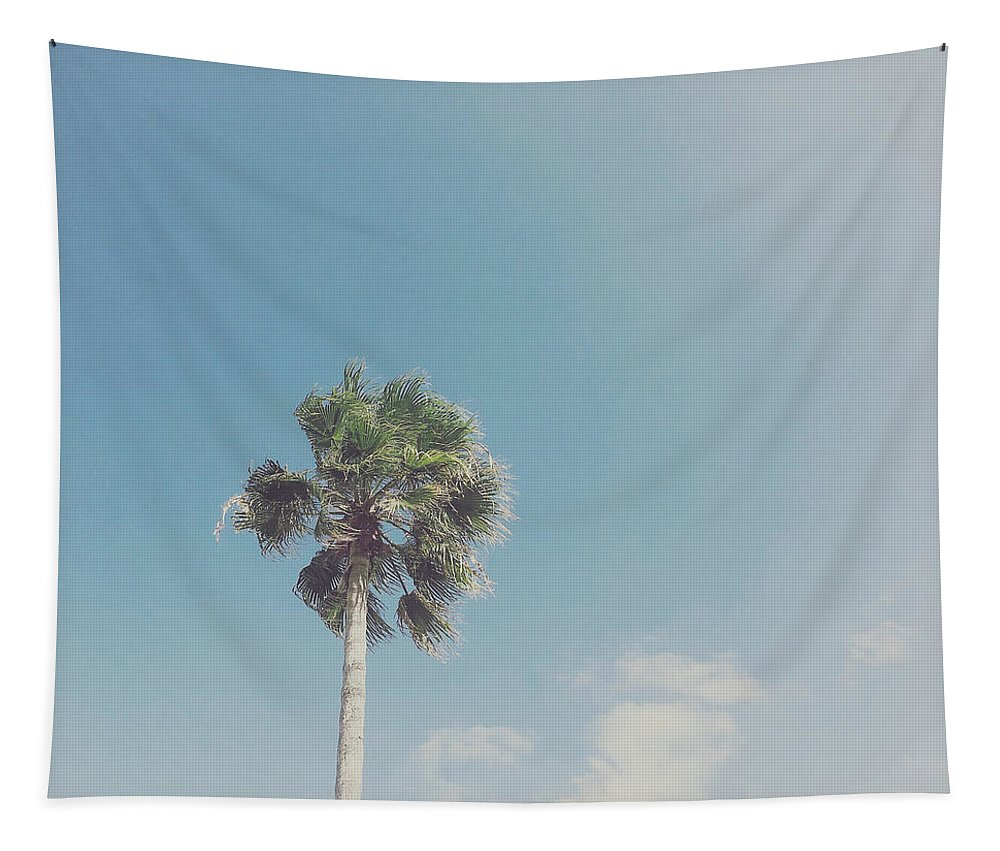 Palm Tree Tapestry featuring the photograph Lone Palm by Cassia Beck