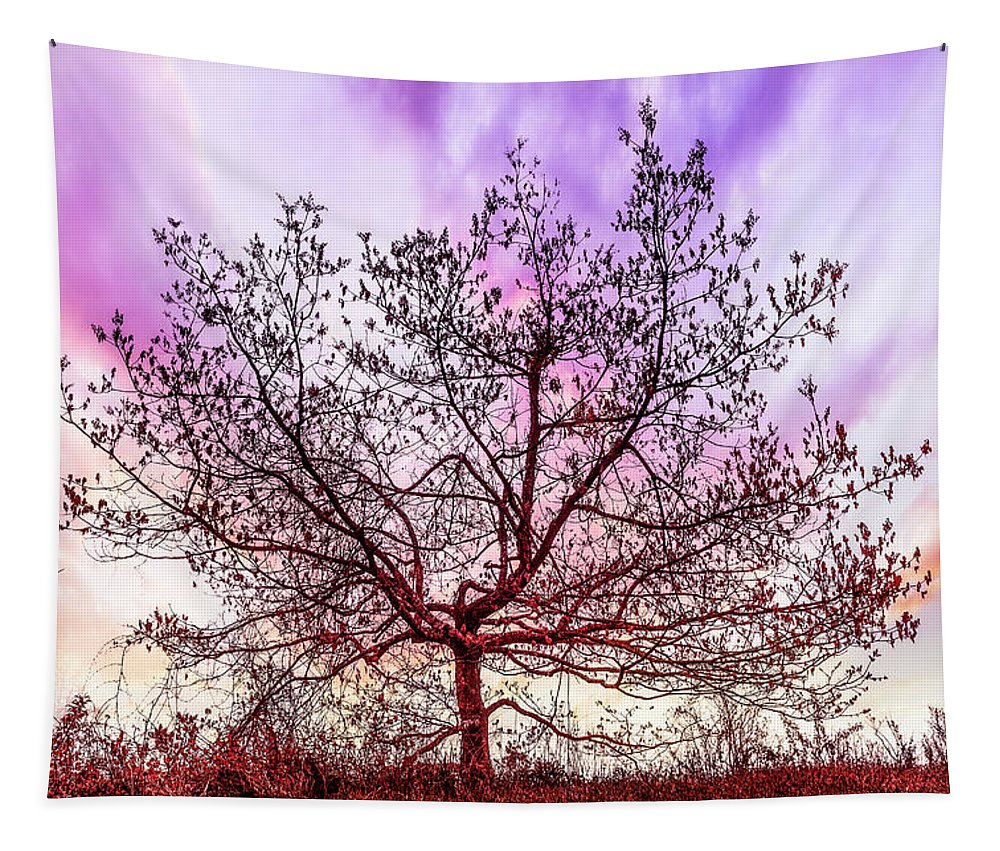 Appalachia Tapestry featuring the photograph Lone Tree On The Hill by Debra and Dave Vanderlaan