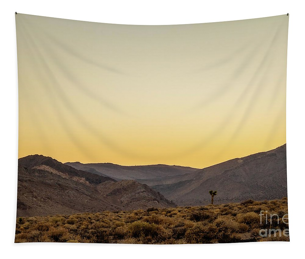 Nature Tapestry featuring the photograph Loneliness At Sunrise by Mirko Chianucci