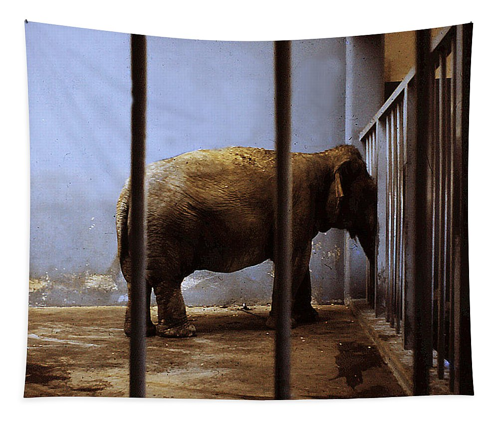 Elephant Tapestry featuring the digital art Lonely One by Richard Ortolano