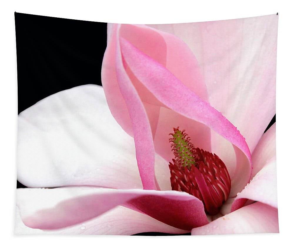 Floral Tapestry featuring the photograph Look Inside by Debra Orlean