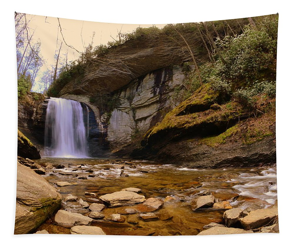 Looking Glass Falls Pisgah National Forest Tapestry featuring the photograph Looking Glass Falls Pisgah National Forest 2 by Lisa Wooten