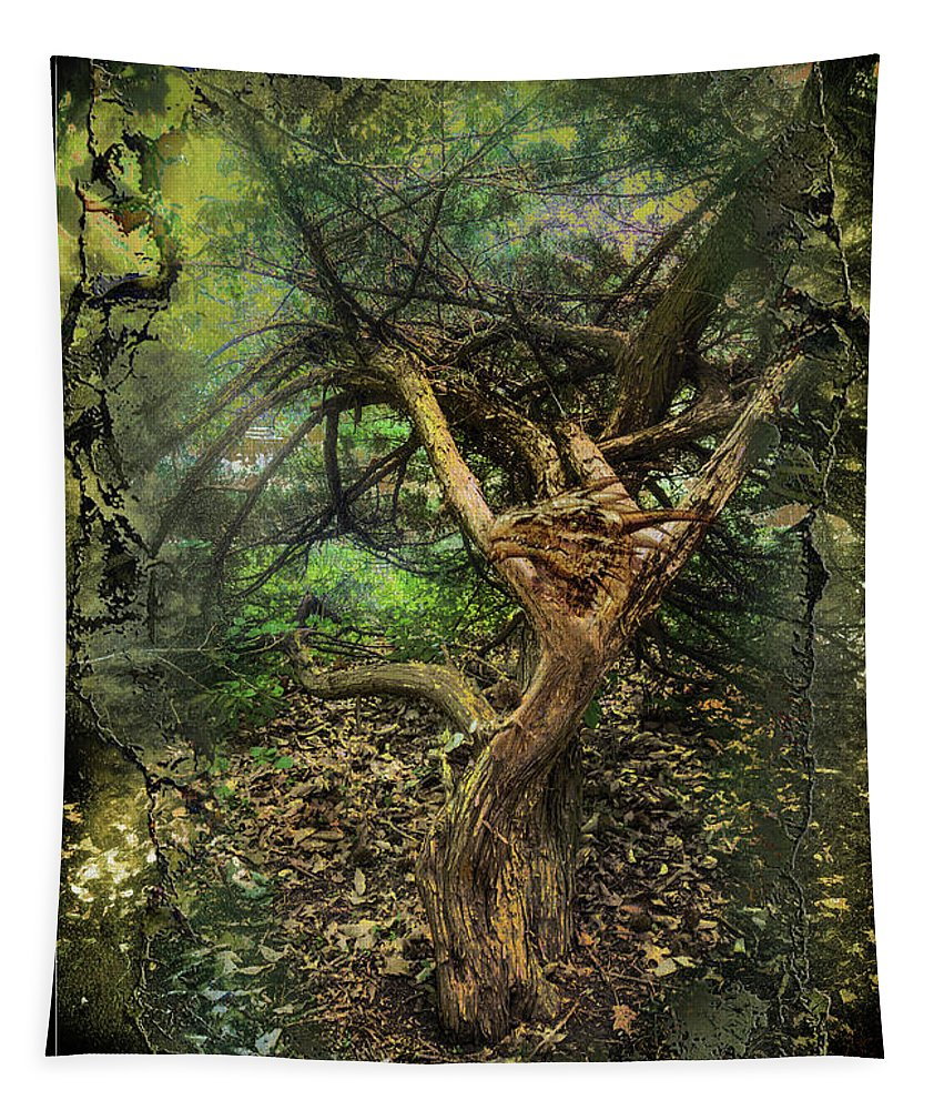Dragons Tapestry featuring the photograph Looking Grimm by John Anderson