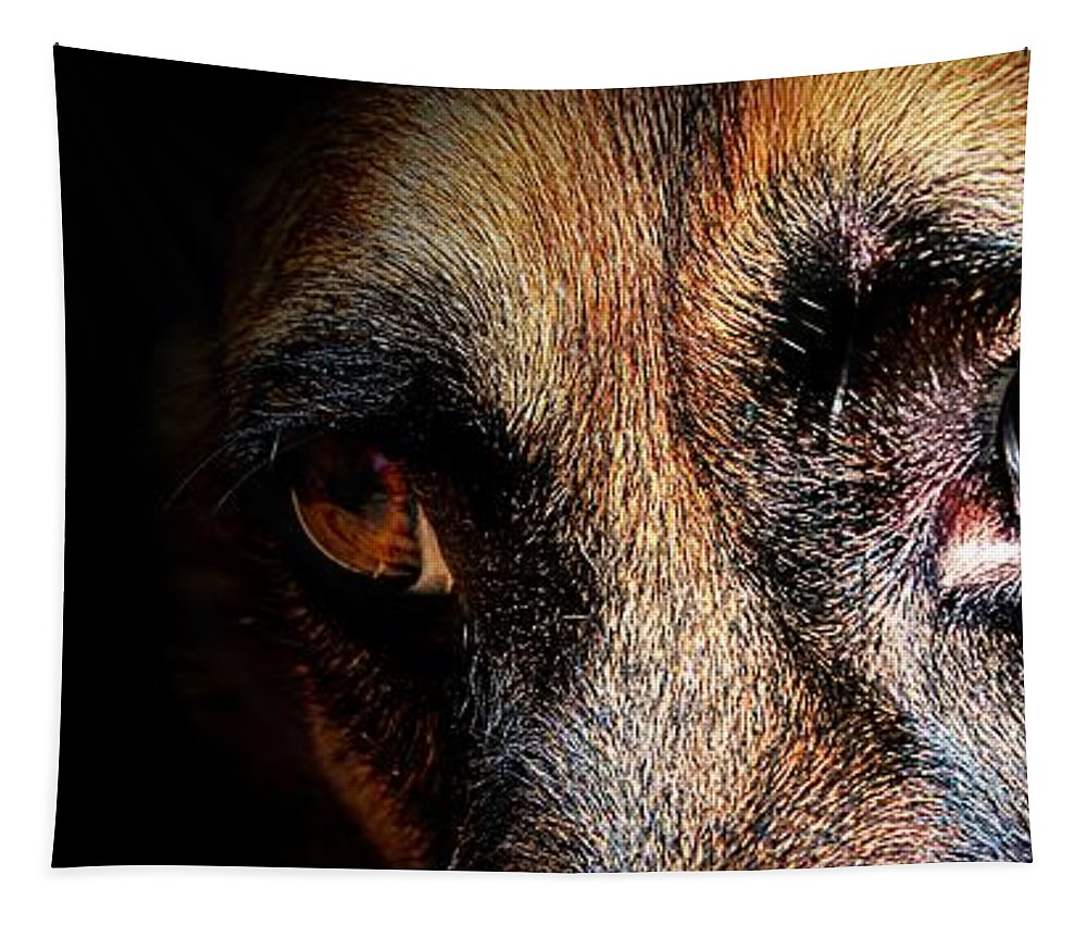 Dog Tapestry featuring the photograph Looking Into My Soul by Clare Bevan
