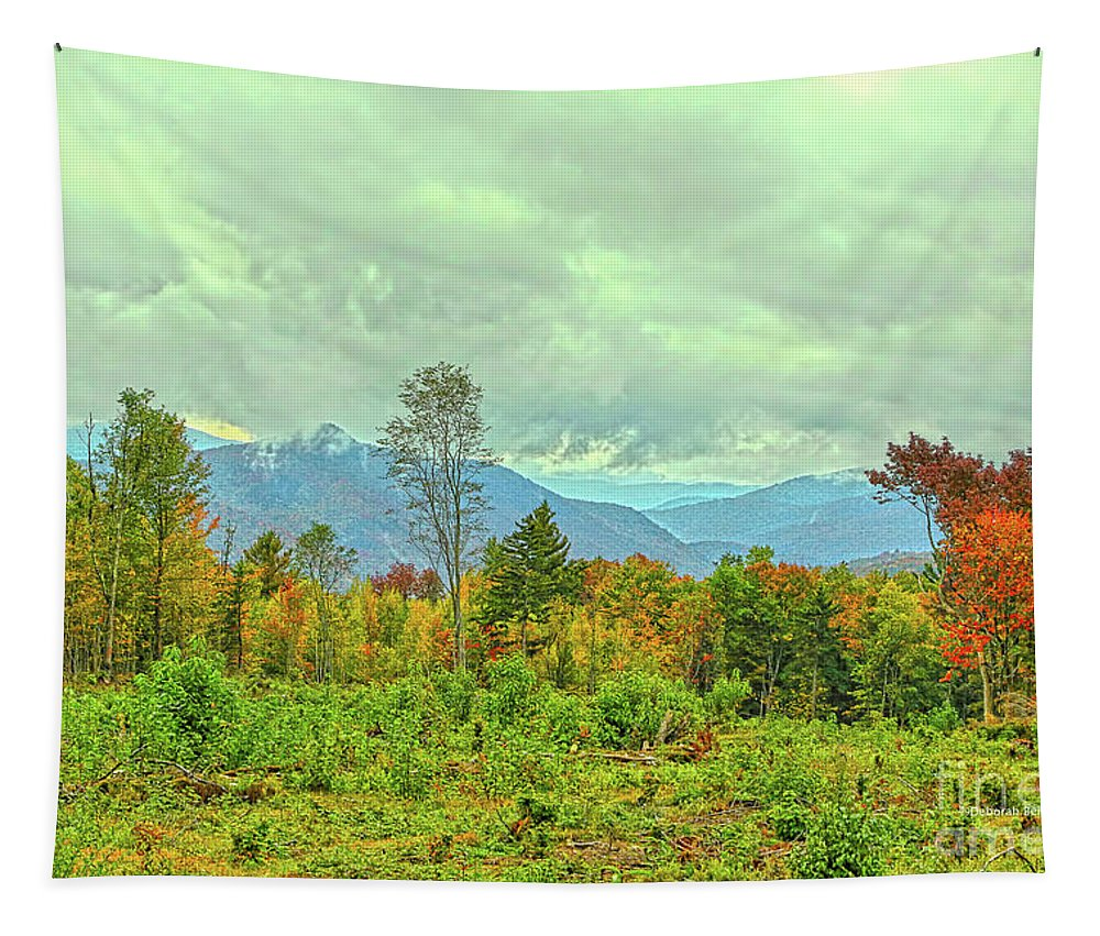 Autumn Tapestry featuring the photograph Looking To The Mountains by Deborah Benoit