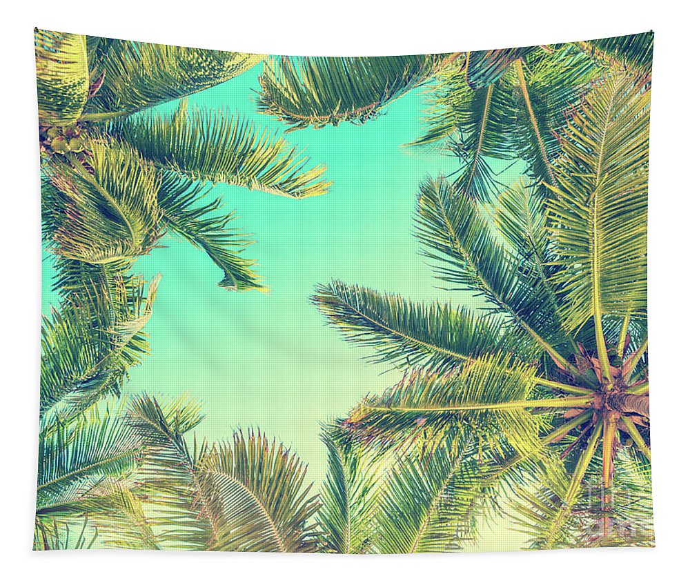 Palm Trees Tapestry featuring the photograph Looking Up by Delphimages Photo Creations
