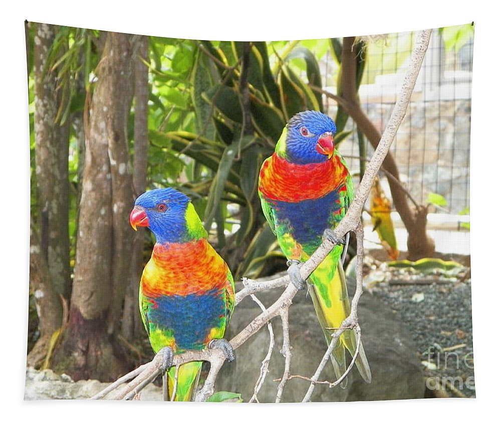 Lorikeets Tapestry featuring the photograph Love Birds by Gina Sullivan