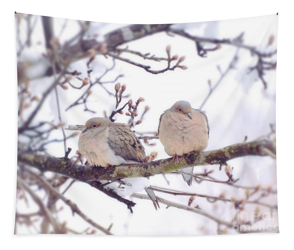 Doves Tapestry featuring the photograph Love Is In The Air - Mourning Dove Couple by Kerri Farley