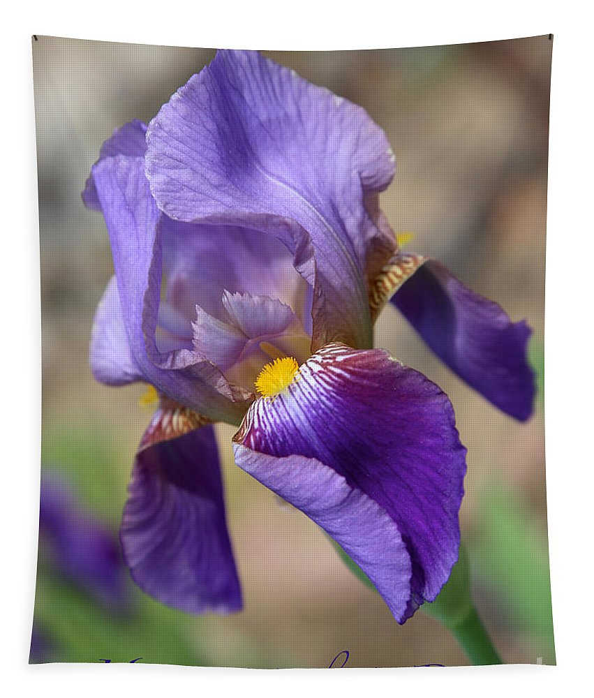 Iris Tapestry featuring the photograph Lovely Leaning Iris Mother's Day Card by Carol Groenen