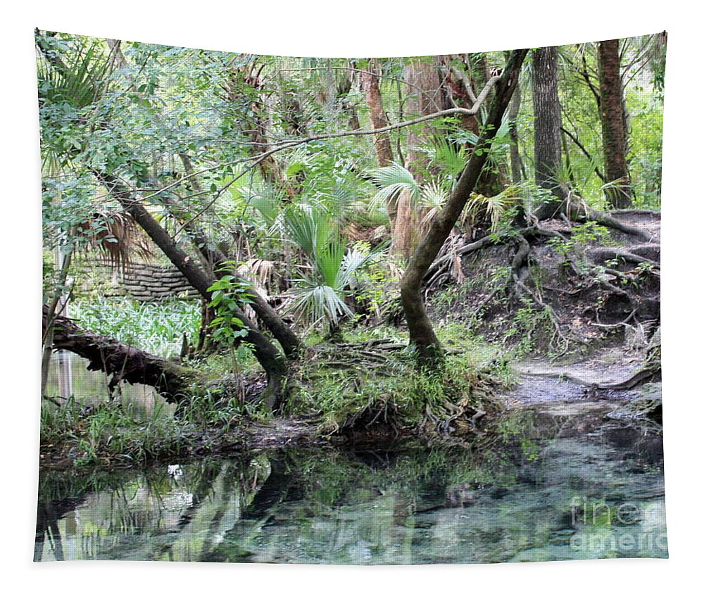 Landscape Tapestry featuring the photograph Lovely Lithia Springs by Carol Groenen
