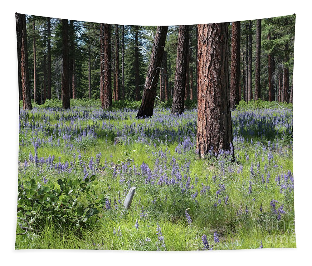 Forest Tapestry featuring the photograph Lovely Lupine In The Mountains by Carol Groenen
