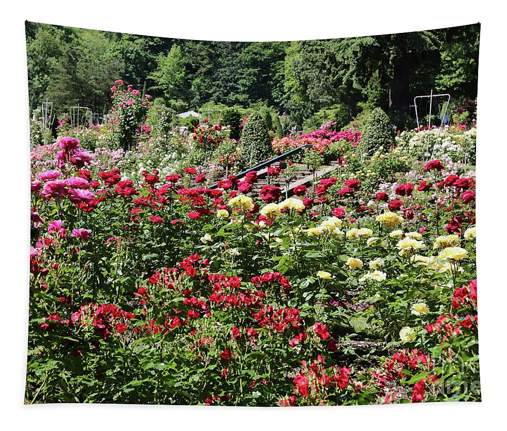 Red Roses Tapestry featuring the photograph Lovely Portland Rose Garden by Carol Groenen