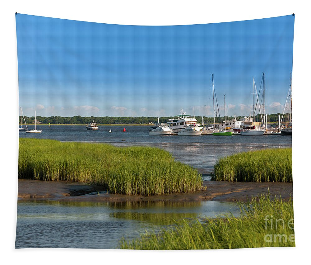 Blue Sky Tapestry featuring the photograph Lowcountry Blue Skies by Dale Powell