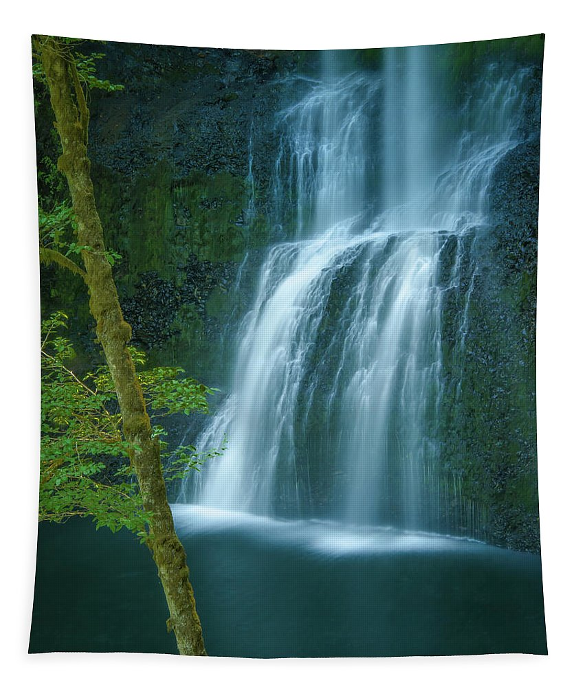 Waterfalls Tapestry featuring the photograph Lower South Falls by Don Schwartz