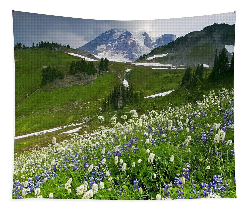 Rainier Tapestry featuring the photograph Lupine Storm by Mike Dawson