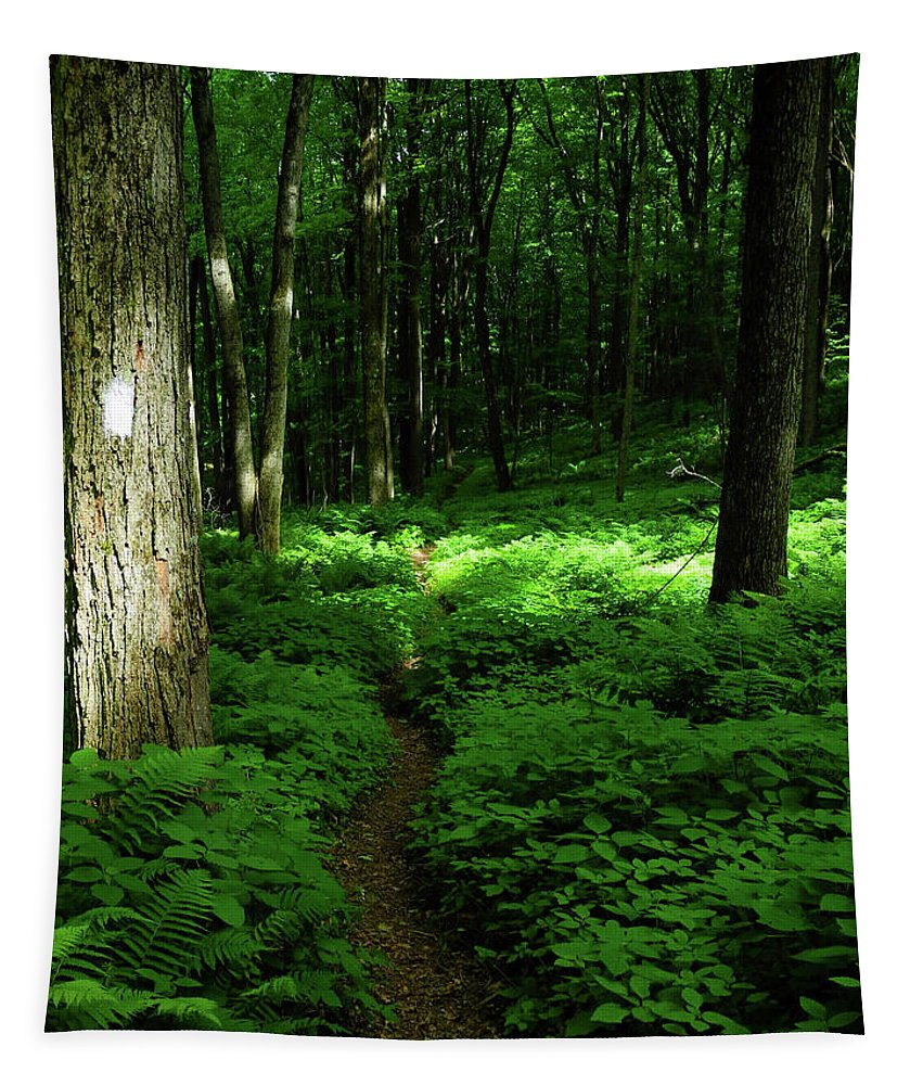 Lush Green At 2 Tapestry featuring the photograph Lush Green At 2 by Raymond Salani III