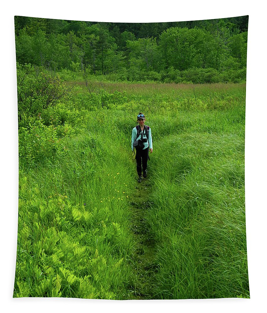 Ma At Section Hiker Tapestry featuring the photograph Ma At Section Hiker by Raymond Salani III