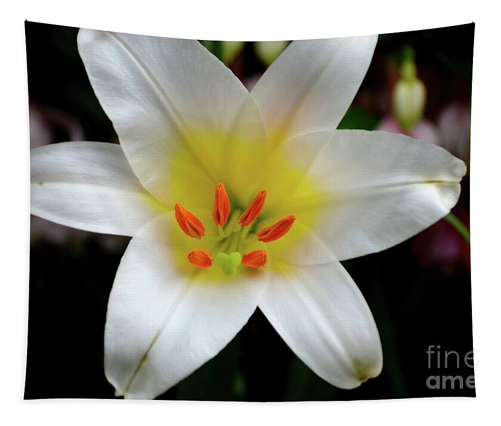Lily Tapestry featuring the photograph Macro Close Up Of White Lily Flower In Full Blossom by Imran Ahmed