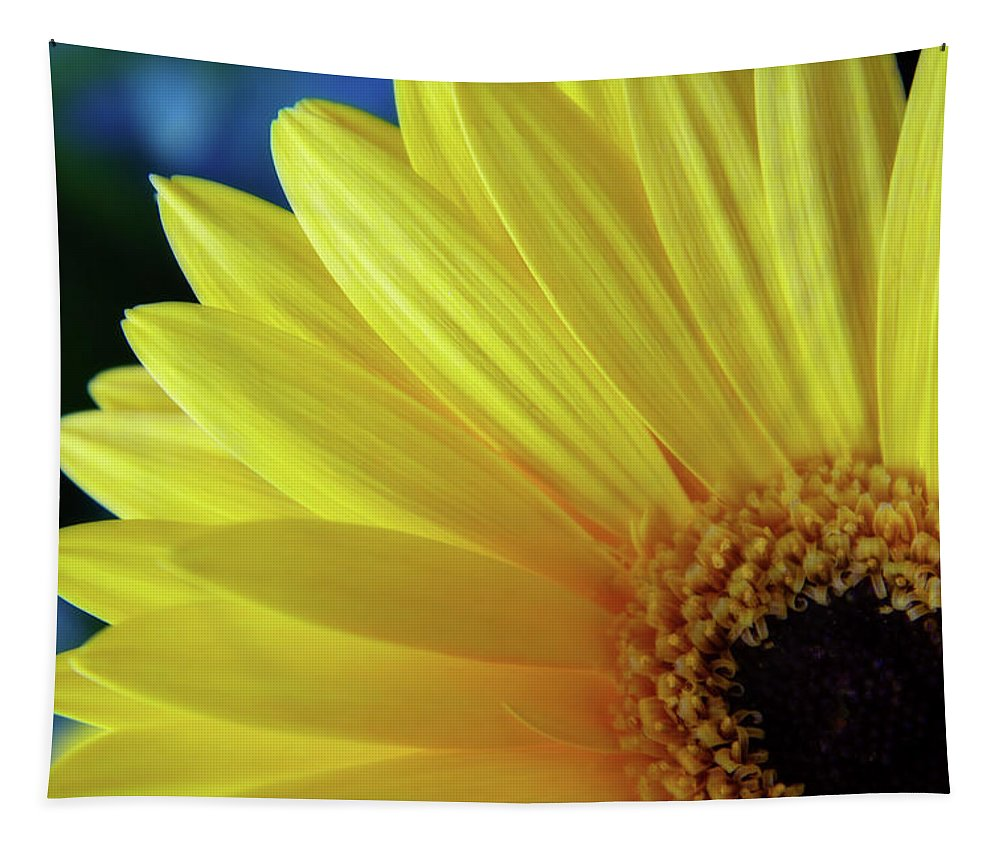 Photography Tapestry featuring the digital art Macro Daisy by Terry Davis